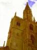 Münster (Basilika ULF)