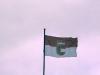 Zemská služební vlajka Salcburska